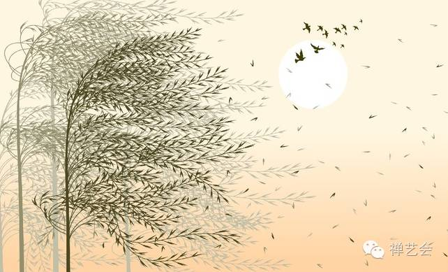 树的方向由风决定,人的方向由自己决定