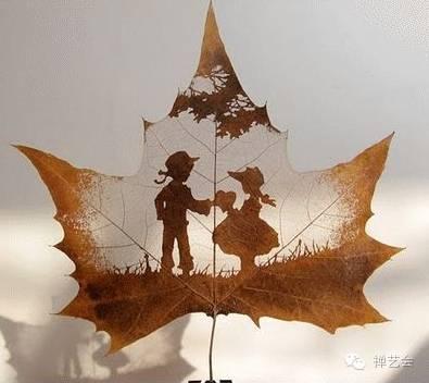 是树不懂爱情,还是风太执着