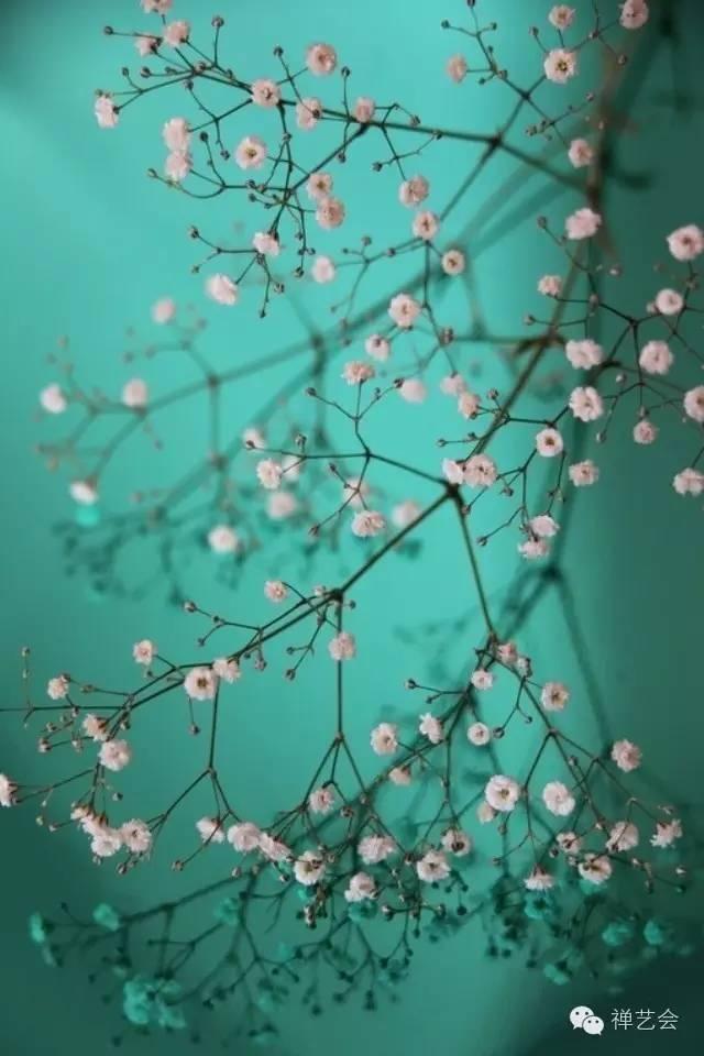 11句禅语告诉我们要爱自己